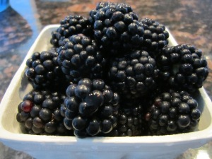 Ontario Blackberries